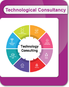 Technological Consultancy